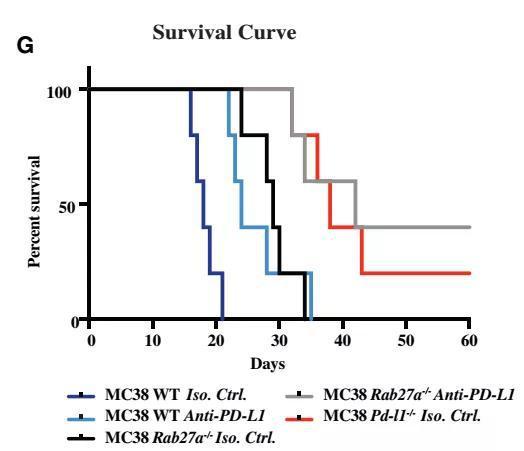 癌细胞竟然会偷袭T细胞指挥部!科学家找到反制办法