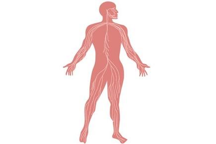 人体中的化学元素,你了解吗?
